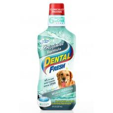 Dental Fresh Original Formula