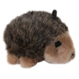Aspen Pet® Hedgehog