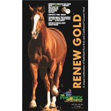 Renew Gold™ Equine Supplement