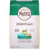 Nutro™ Lamb Large Breed Puppy Dog Food