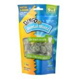 Dingo® Dental Mintz 30 Pack